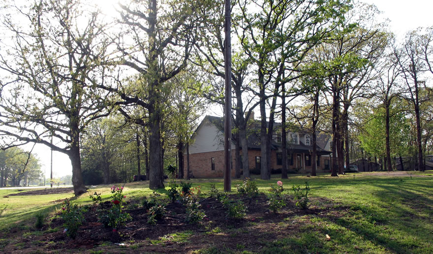 Bed And Breakfast In Canton Tx On The Mountain